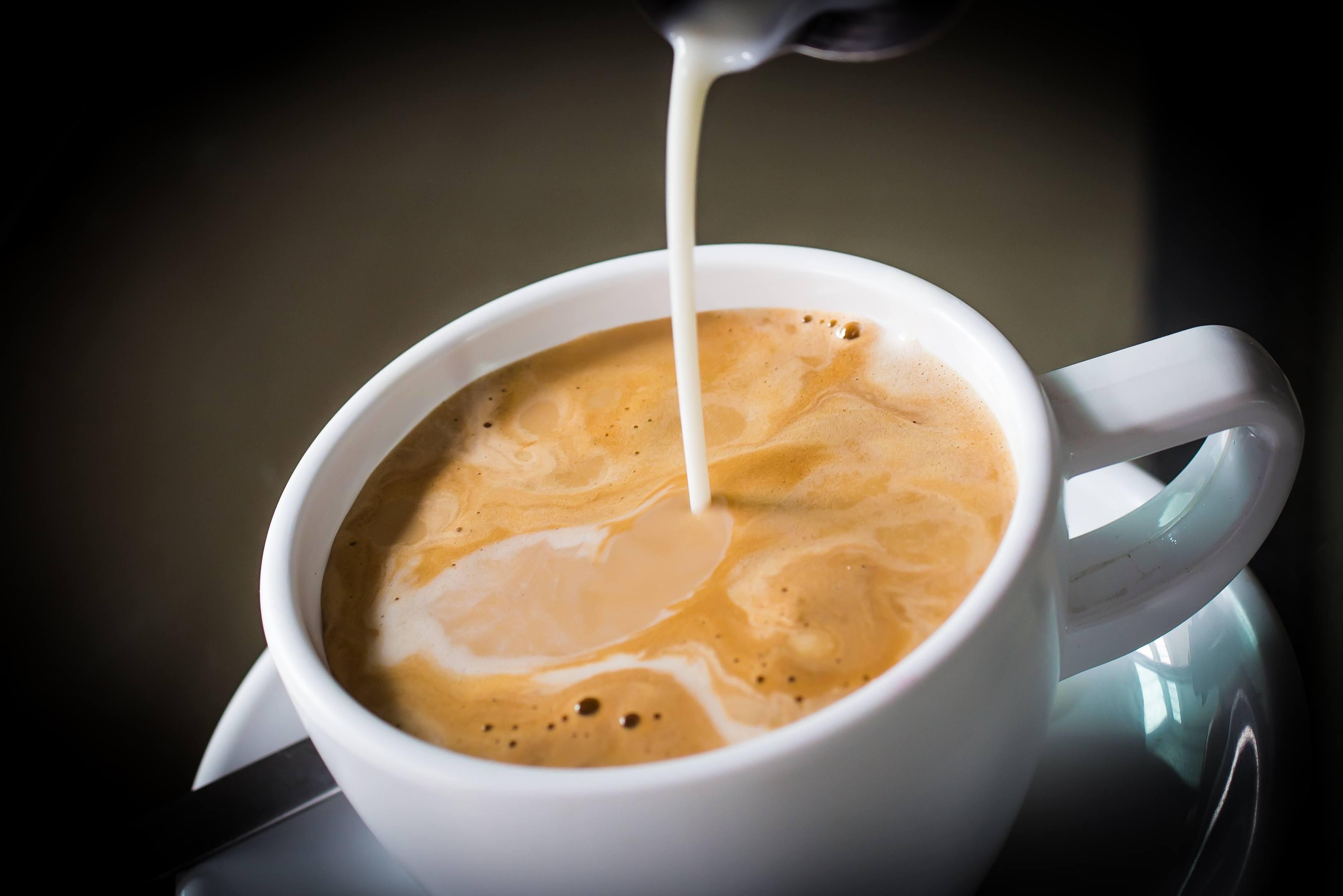 Best Vegan Coffee Creamer
